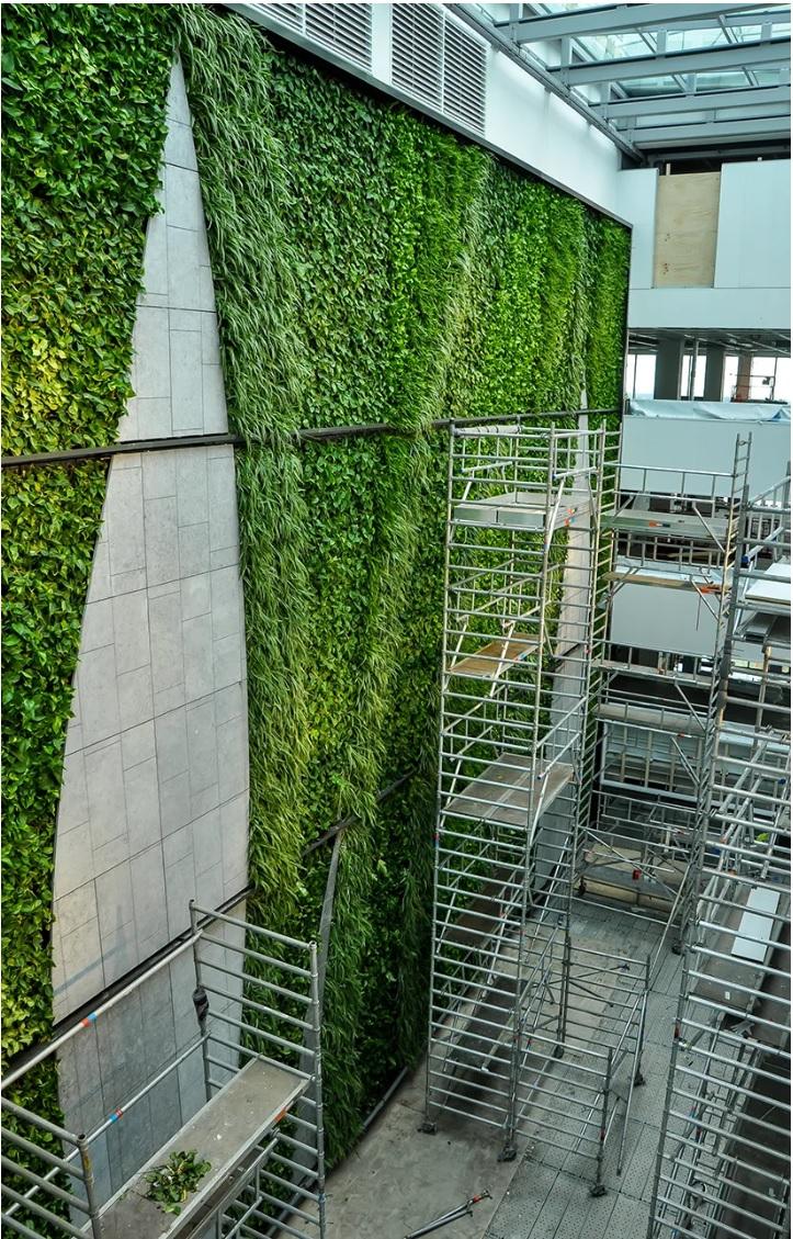 Efix-indoor WallFlore groene plantenwand EMA