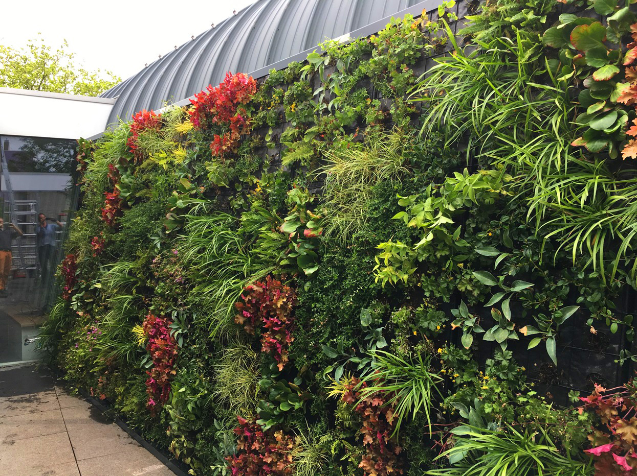 Groene buitengevel verticale beplanting WallFlore